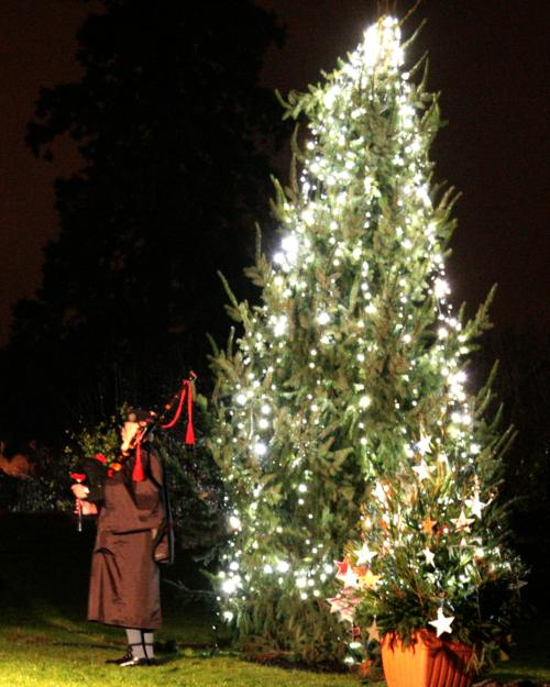 Lights Of Love At Willen Hospice