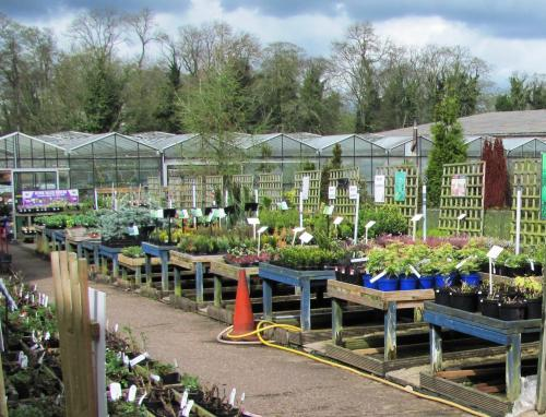 Donington Nurseries and Walled Garden in Castle Donington