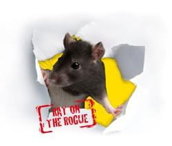Leicestershire Trading Standards 'Rat on the Rogue' campaign logo