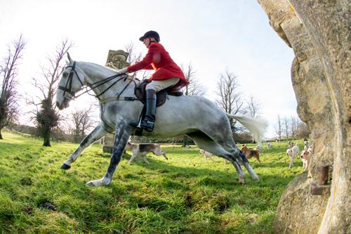 Huntsman Mick Wills leads the cavalry charge at Easton Neston on Boxing Day