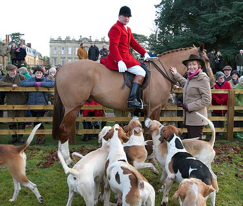Huntsman Mick Wills with Andrea Leadsom MP for South Northamptonshire and hounds of the Grafton Hunt at Easton Neston