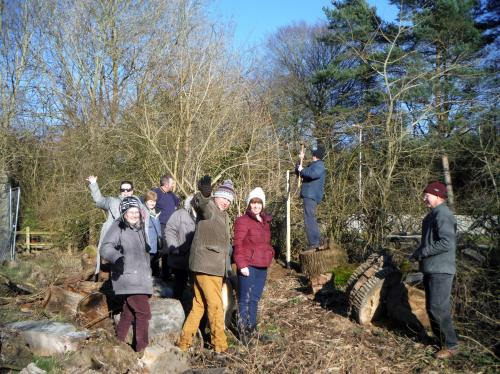 Oak planting group