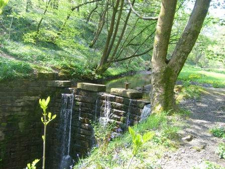Waterfall at Redisher Wood