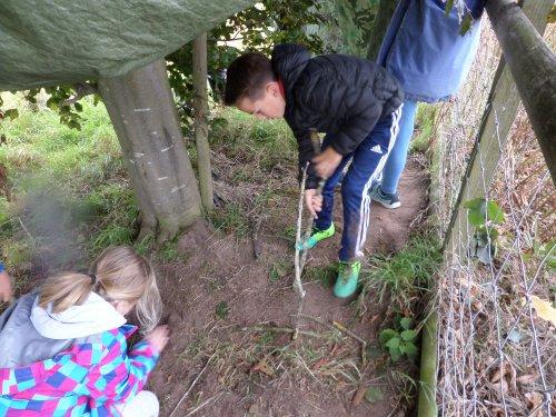 Fun in the forest for Bishop Wilson schoolchildren