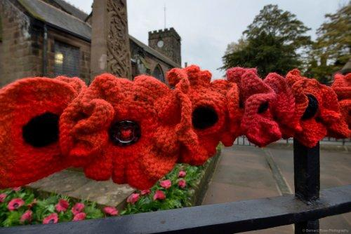Knitted poppies around the Cenotaph in Neston
