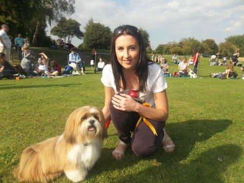 Kudos for Koko at Stanney Fields Dog Show