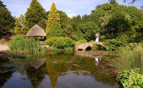 Weddings at Ness Gardens